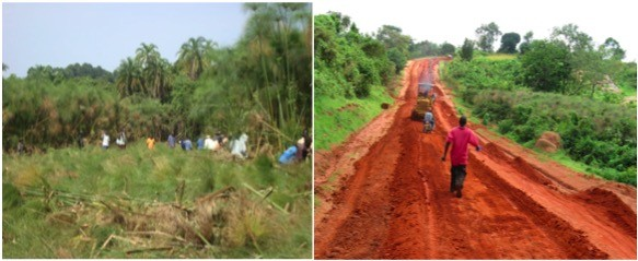 Community Members Built a Road Connecting 2 Towns